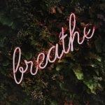 Pranayama - breathe