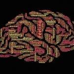 Making mindfulness matter