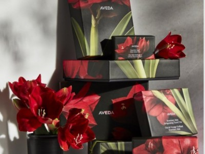 All We Want for Christmas… Is Aveda!